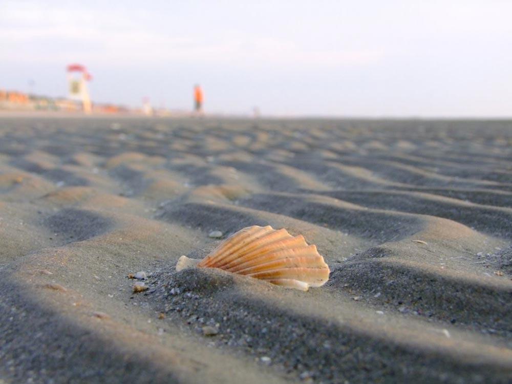 Spiaggia Zadina di Cesenatico